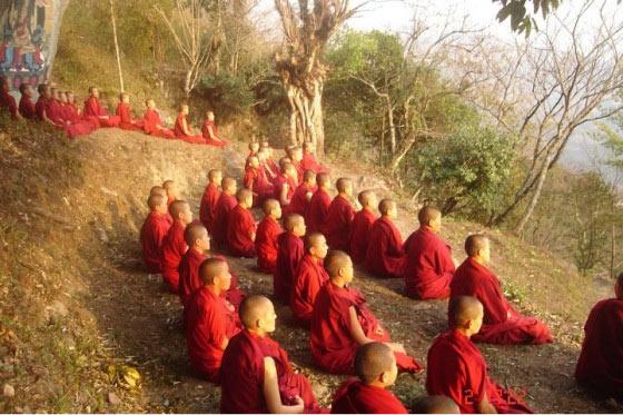 Meditation Tour