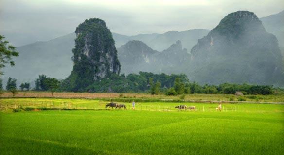 Ngoc Son & Ngo Luong - Cuc Phuong Trekking Tour