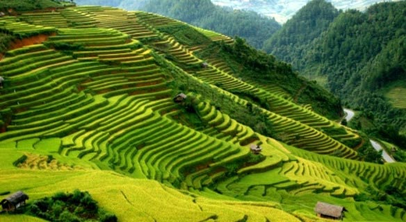Vietnam Green Trail 6 Days/ 5 Nights