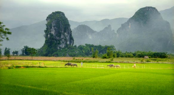 Experience Of Vietnam & Cambodia 21 Days/ 20 Nights