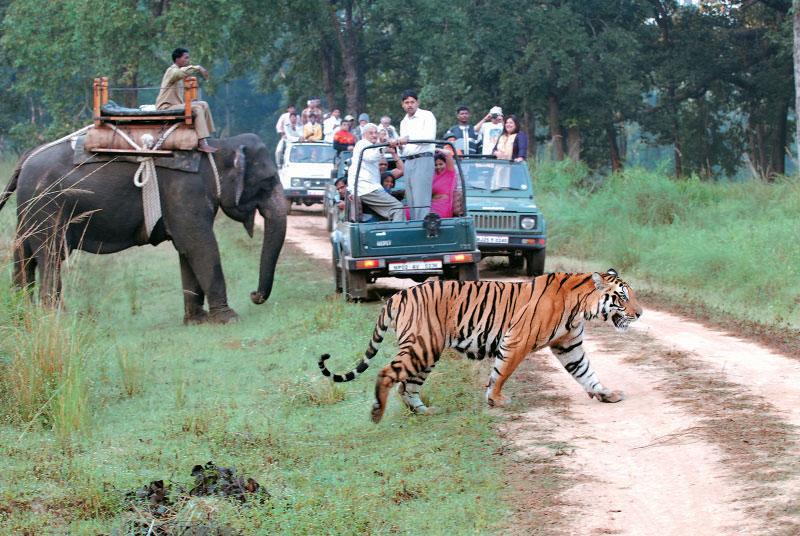 Amazing Uttarakhand Tour