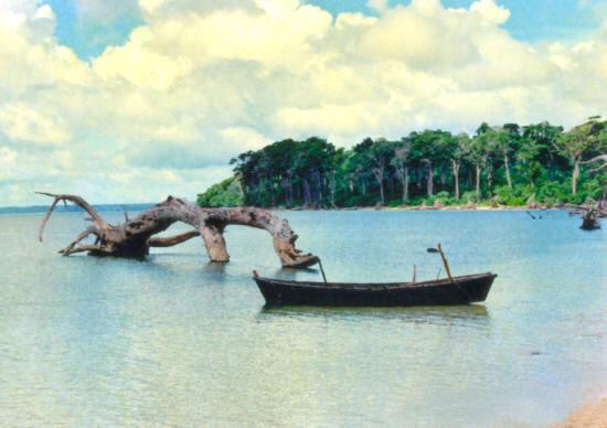 Wandoor Beach In Andaman Package