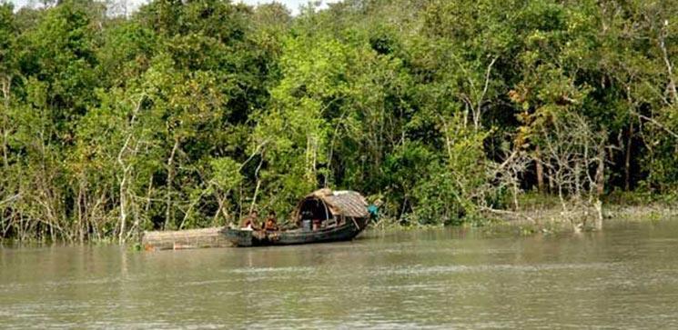 Sundarban Tour Form Kolkata 2 Day