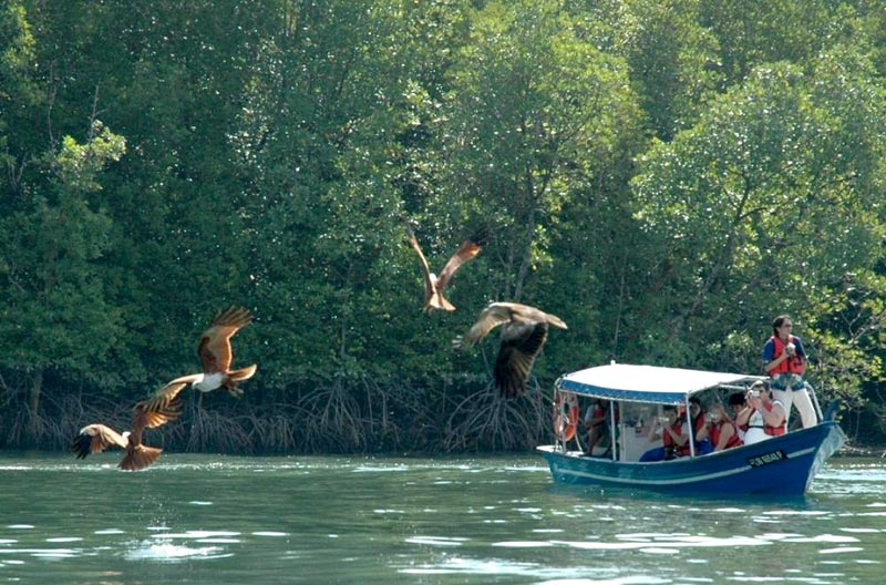 Langkawi Nature Discovery Tour