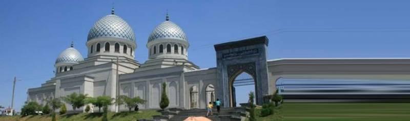 Tashkent Air Package