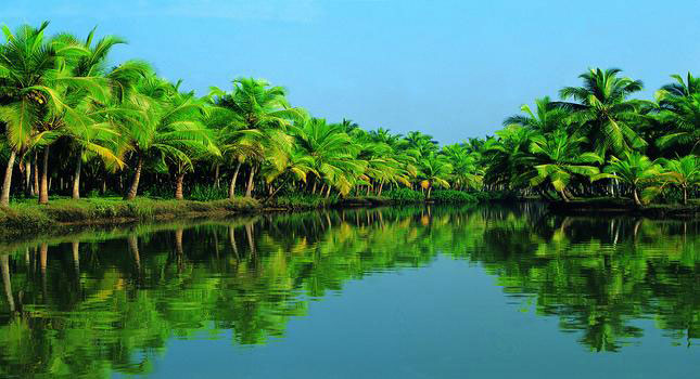 Kerala With Houseboat Tour