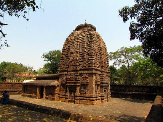 Golden Tringel Tour Of Odisha