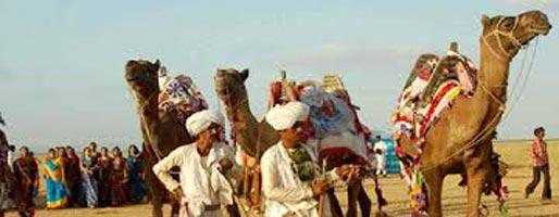 North Gujarat Tour