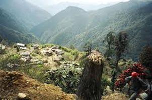 Dzongri - Goecha La Trek! Tour