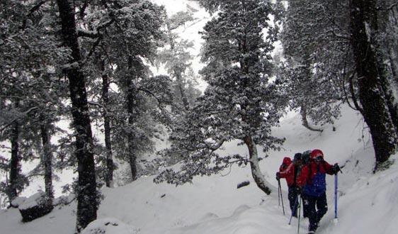 Snow Winter Trek Tour