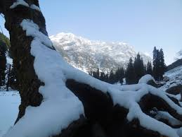 Kashmir Snow Trek Tour