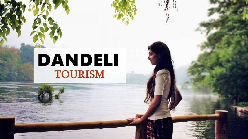 Dandeli Adbenture Jungle Safari