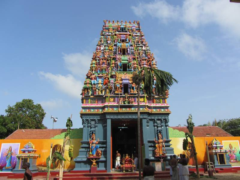 Temple Special Tours