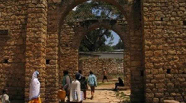 Tour The Old Town Of Harrar