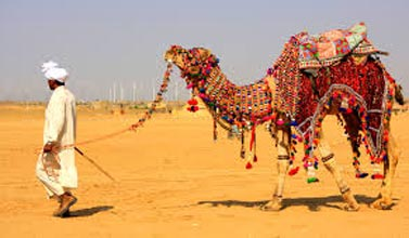 Stunning Rajasthan Honeymoon Package