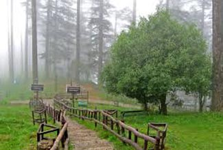 Camp Kanatal 2D/1N Package