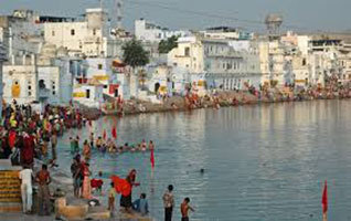 Pushkar Fair WIth Tiger & Taj Mahal Tour