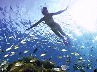 Blissful Honeymoon At Port Blair & Havelock Island Andaman & Nicobar