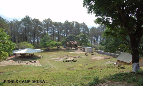 Enjoy In The Lap Of Nature At Jungle Camp Tour
