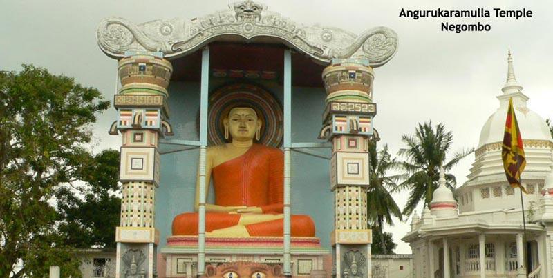 Wonder Of Asia Sri Lanka Trip