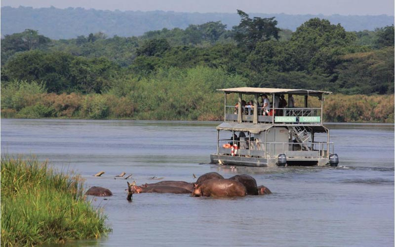 Murchison Falls Safari  Package