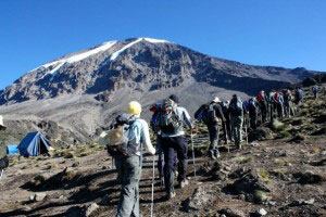 Kilimanjaro And Wildlife Safari Tour