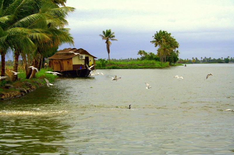 Exotic Kerala With Houseboat Tour