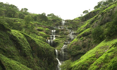 Blissful Days In Coorg Tour