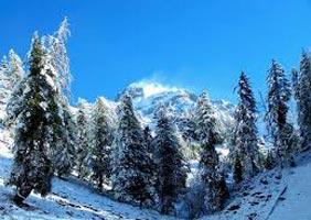 Himalayan Magic Tour