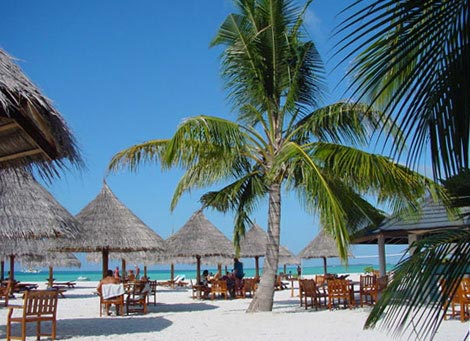 Vacation In Maldives Package