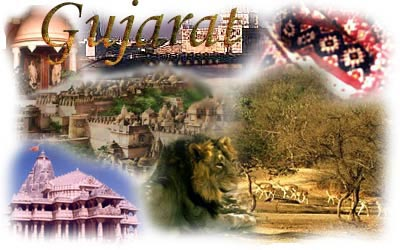 Amazing Gujrat - Spiritual With Wildlife Journey Tour