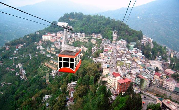 Wildlife Sikkim Tour