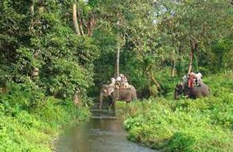 Green Dooars Jungle Trip Tour