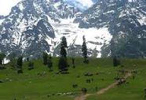 Katra - Shivkhori - Patnitop - Mansar - Jammu Package