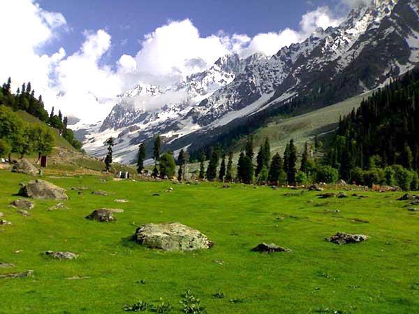 Kashmir Heaven Package