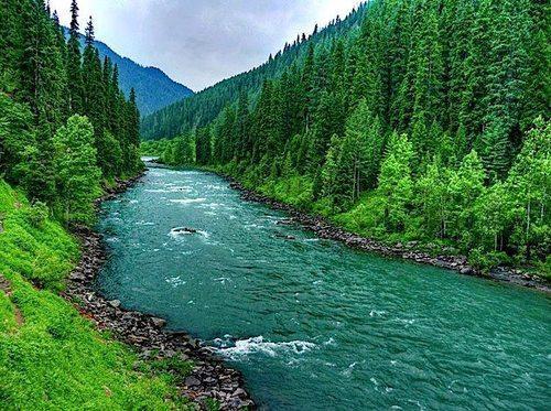 Glimpse Of Kashmir (4 N / 5 D) Tour