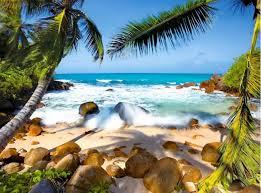 Tropical Paradise Tour