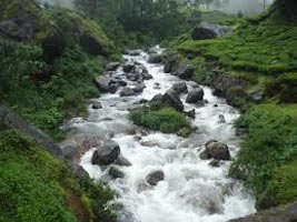 Munnar Blackberry Hills Enchanting Honeymoon Package 2N/3D