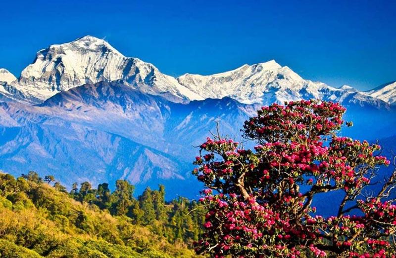 Bumthang Cultural Trek – Bhutan Tour