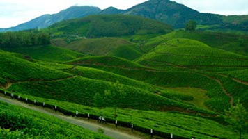 Pretty Kerala - 04 Nights 05 Days Tour
