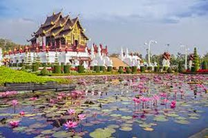 Chiang Mai Family Adventure Tour