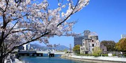 TZ002 : Cherry Blossom Special Tour