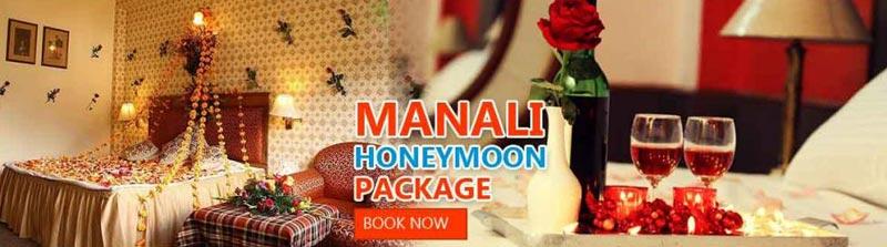 Manali Honeymoon Special Tour