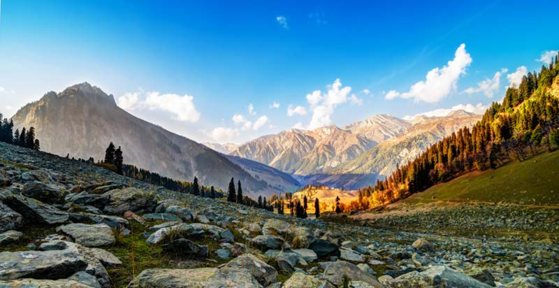Devine Of Kashmir Tour Package