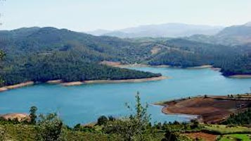 Coorg / Mysore/ Ooty 6N/7D Tour