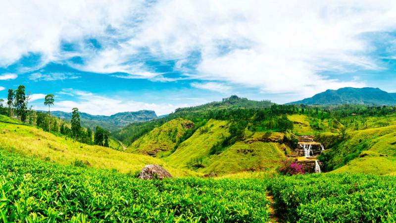 5 Nights With Sri Lanka Tour