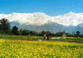 Dharamshala Special Adventure Package