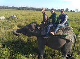 North East Tour Aooling Mon Ziro Majuli Kaziranga Tour