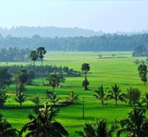 Explore Malabar Tour
