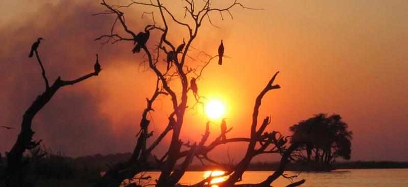 6 Days East Africa Adventure, Kenya And Tanzania Safari Package